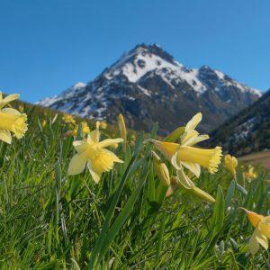 L'Andorre, toute l'année!
