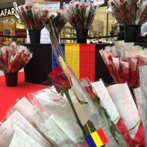 5 llibres recomanats per Sant Jordi 2019