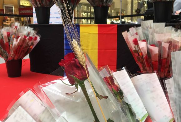 Your Sant Jordi 2019 top 5 reading list