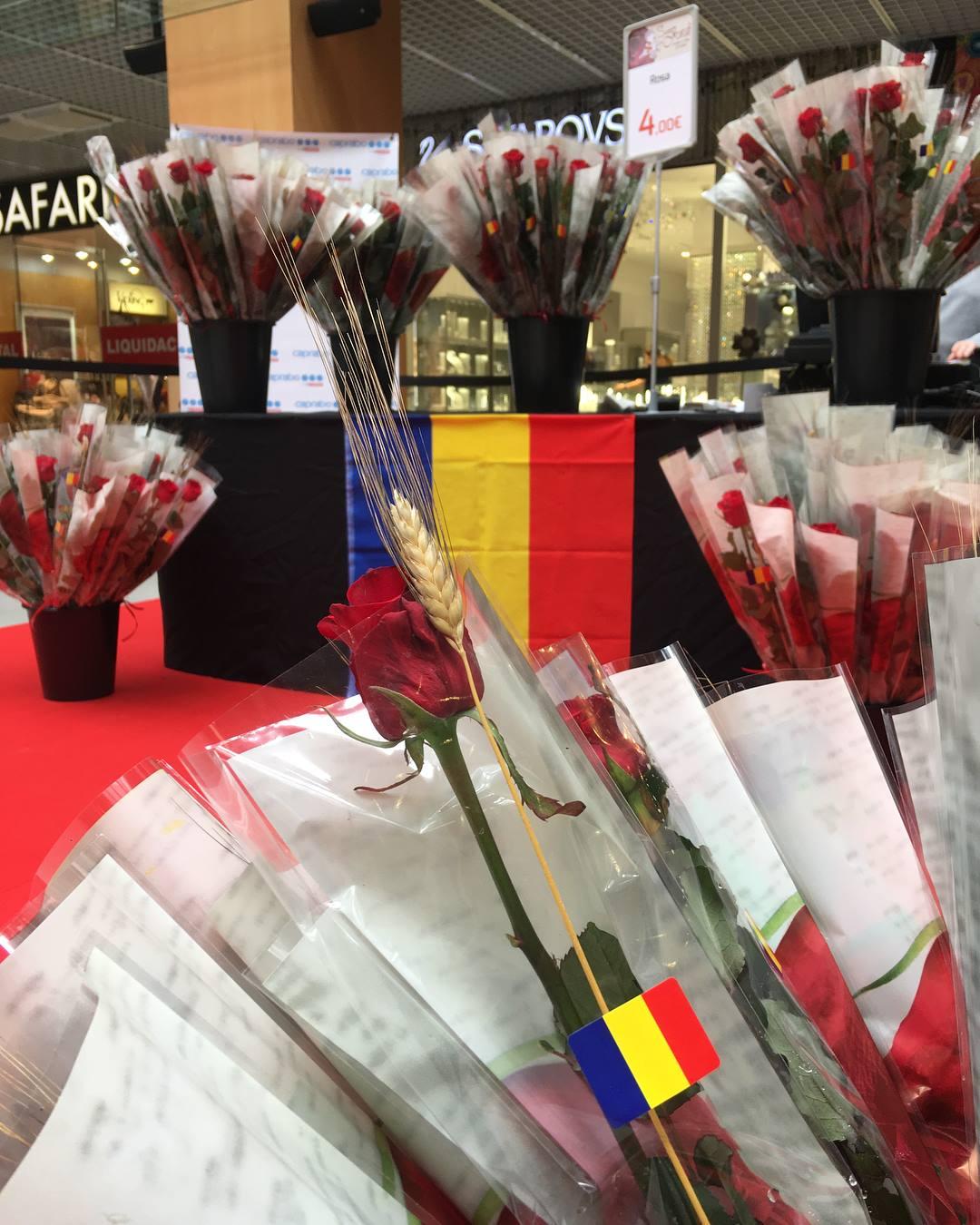 5 libros recomendados para Sant Jordi 2019